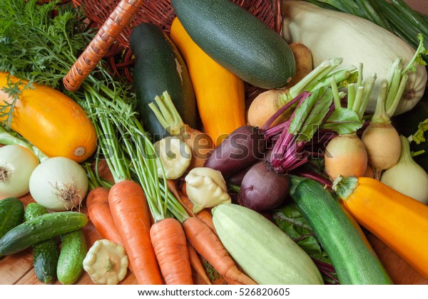 Fresh vegetables: cucumbers, squash, zucchini, yellow squash, carrots, beets, turnips, onions. Collection of organic vegetables background / vegetable basket.
