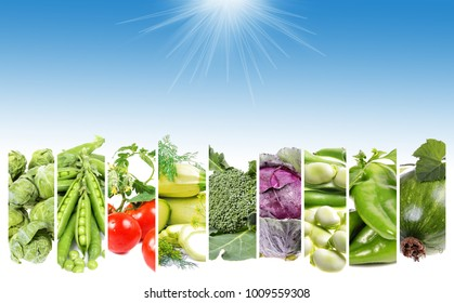 Ð¡ollage fresh  vegetables  . Healthy food background with text space