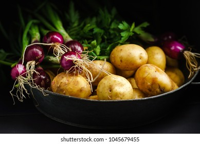 fresh vegetables on the black background