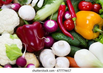 Fresh vegetables tomatoes cucumber squash and greens background close-up