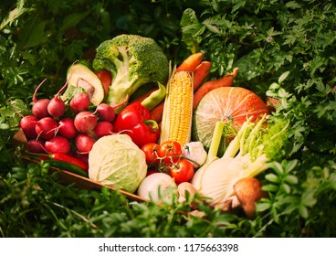 Fresh vegetables in wooden box. close up
