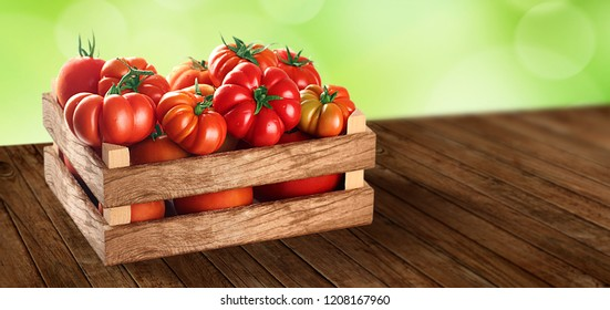 Fresh village tomatoes in wooden case