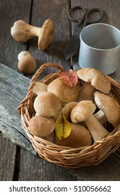 Fresh white mushrooms(boletus edulis) from forest in basket for cooking. Fall concept.