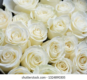 Fresh white roses bouquet flower background