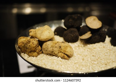 Fresh whole and half sliced truffle mushrooms, both white and black ones over a plate of rice in metal dish. Prestigious, delicate and expensive ingredient. Selective Focus on White Truffle.
