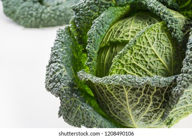 Fresh whole raw green savoy cabbage vegetable  on white background