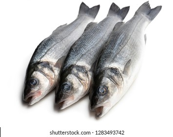 Fresh  whole sea bass fish isolated on a white