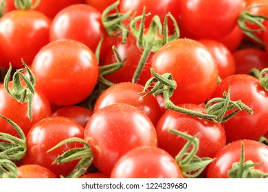 fresh wild currant tomatoes in closeup view