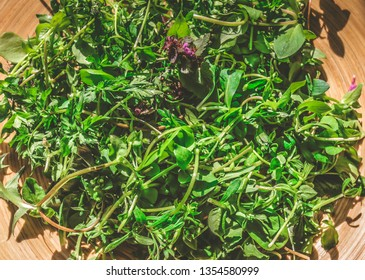 Fresh wild edible weeds on a wooden plate