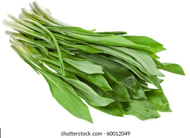Fresh wild garlic leaves isolated on white background , Ramson