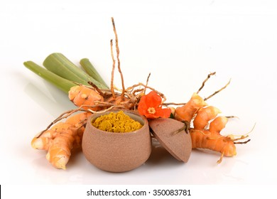Fresh and Wild Turmeric powder (Curcuma aromatica Salisb.) Thailand is herb Curcuminoids compounds with antioxidant properties. Or used as a medicinal herb.