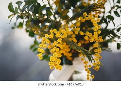 Fresh yellow mimosa flowers bouquet in evening light outdoors. Mimosa for the International Women's Day 8 March. Bunch of flowers.