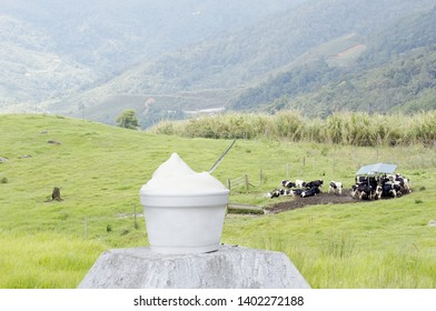 Fresh Yogurt on Green Alpine Pasture Background