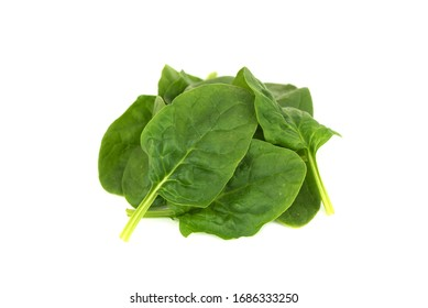 fresh young baby spinach leaves