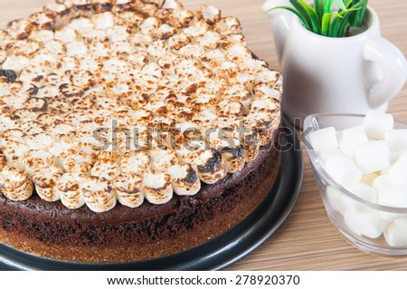 Freshly Bake Smores Cake With Toasted Marshmallows On Top