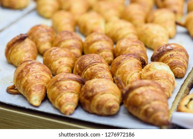 Freshly baked croissants on the wooden shelf in a bakery. Classic Viennoiserie made of puff pastry looking yummy.