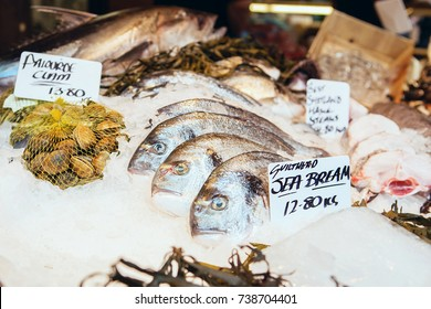 Freshly caught Sea Bream fishes and other seafood. Sparidae, Pagrus major, Ch'amdom and Pagellus bogaraveo. Common pandora fish pagellus erythrinus