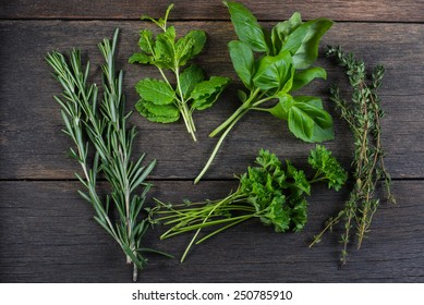 Freshly clipped herbs on wooden background