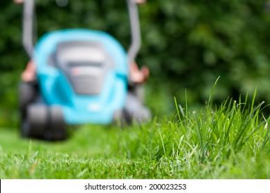 Freshly cut grass by blue lawnmower