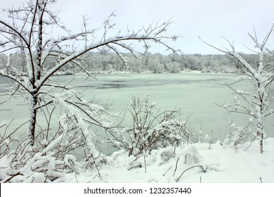 Freshly fallen snow on Pierce Lake at Rock Cut State Park in Illinois