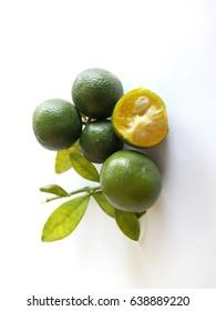 Freshly harvest Calamondin or calamansi lime isolated on white background. selective focus, blur image