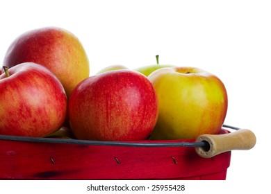 A freshly harvested basket of apples ready for market.