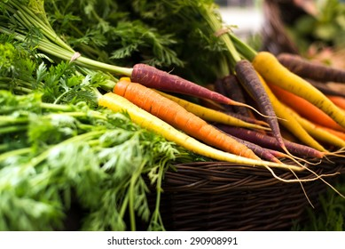 freshly harvested, colorful organic carrots in a basket at farmer's market. selective focus, horizontal, close up.