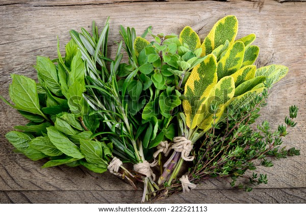 Freshly harvested herbs, bunch of fresh herbs over wooden background.