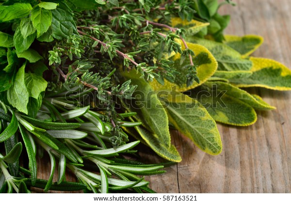 Freshly harvested herbs: rosemary, mint, sage and thyme over wooden background. Angle view.