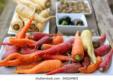 Freshly harvested homegrown variety of colorful organic vegetables, including carrots, peppers, ground cherries, and parsnips, are displayed for a food feast on a wood picnic table.