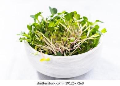 Freshly harvested radish microgreens in a bowl.