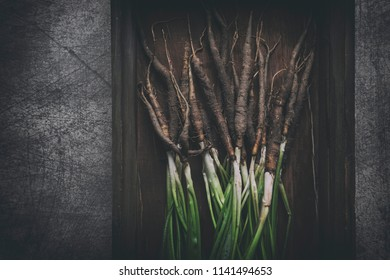 Freshly harvested salsify with green branches in old rustic crate