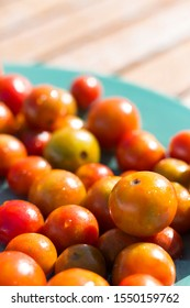 Freshly harvested small organic cherry tomatoes