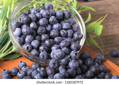 Freshly Picked Blueberries - Shutterstock ID 1185187972