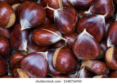 freshly picked chestnuts. Chestnuts are a very nutritious type of dried fruit.
