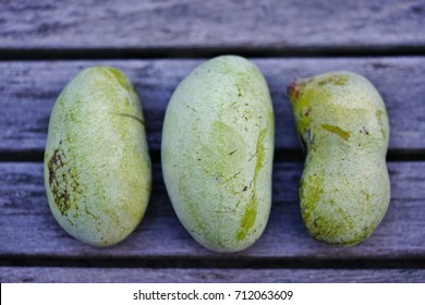 Freshly picked fruit of the common pawpaw (asimina triloba), also called custard apple