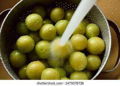 Freshly picked mirabelles lie in a metal sieve covered with drops of water and are washed under running water and prepared for further preparation.