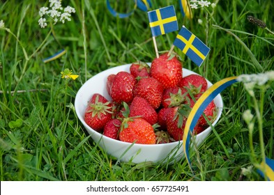 Freshly picked strawberries in a white bowl of porcelain in the grassy meadow. Swedish holiday celebration