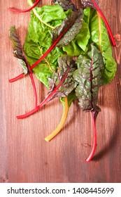 Freshly picked swiss rainbow Mangold or Swiss chard 'Rainbow' leaves