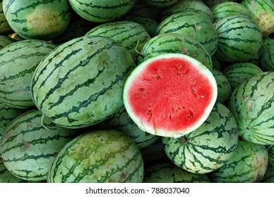 Freshly picked watermelon on display for sale