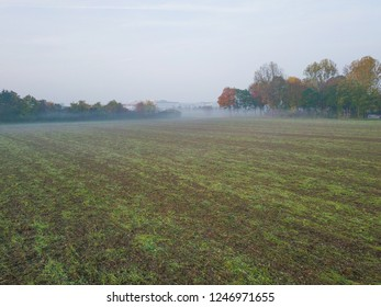 Freshly plowed field by misty forest