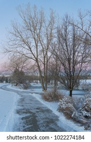Freshly plowed footpath around lake after Winter snowstorm with leafless cottonwood trees and soft colors sunrise sky in background.