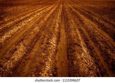 Freshly plowed ploughed farm field for growing crops agriculture