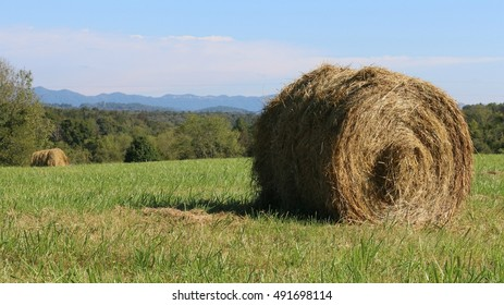 Freshly Rolled Golden Hay In Open, Green, Grassy Field With Trees, Mountains And Blue Sky In Background On A Farm In South West Virginia