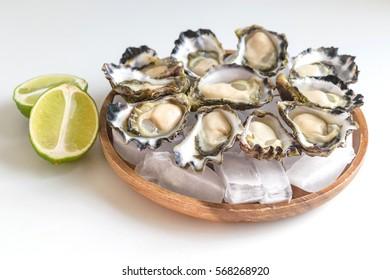 Freshly shucked Sydney Rock Oyster