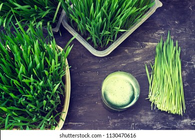 Freshly squeezed juice from wheat grass