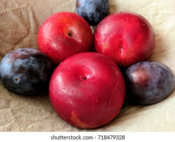freshly washed plums and peaches in a linen lined basket