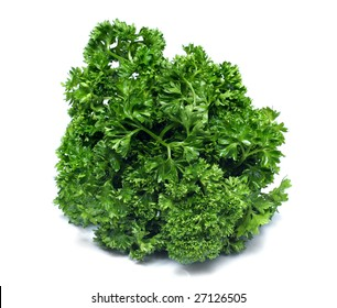 Freshness green parsley isolated on white