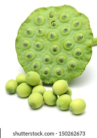 Freshness Lotus seed and pod
