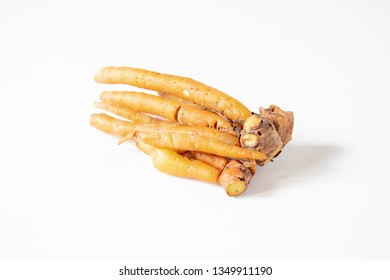 Freshness raw Fingerroot,  on white background isolated. Vegetable or ingredient in asia culinary ,a chinese ginger or krachai is a medicinal, shape as fingers growing in soil.